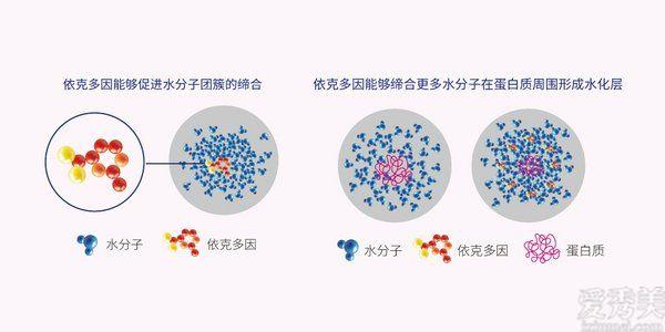 華熙生物BM肌活賦活煥能肌底精華水 敏感肌專屬守護已就位