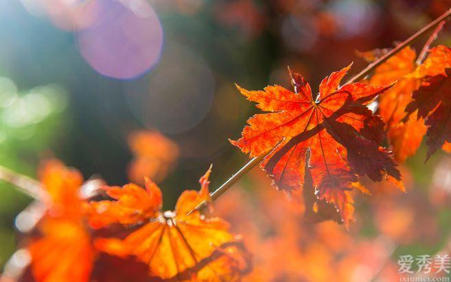 秋天仍在為膚燥疑慮 ? 這三大 護膚常識很重要