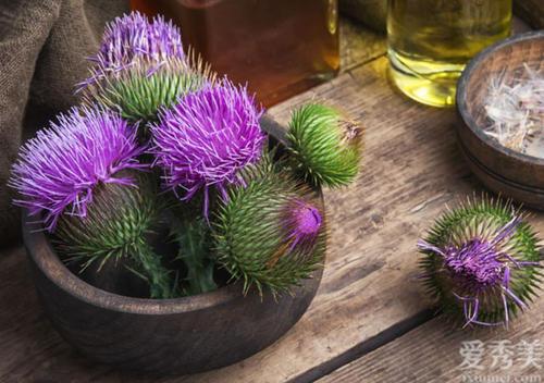 水飛薊素和水飛薊賓有什麼區別?搭配什麼物質護肝更好?