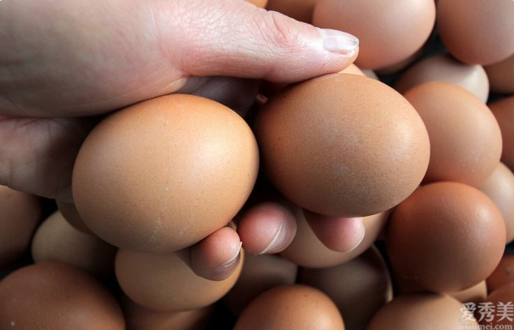 常吃雞蛋會造成膽固醇升高嗎?對身體健康不太好