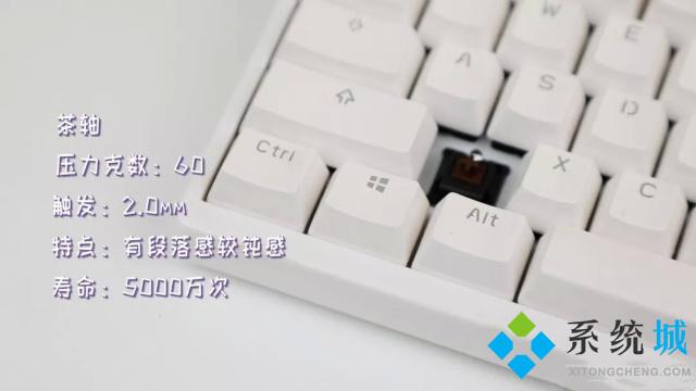 機械鍵盤茶軸介紹